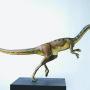 Der Coelophysis lebte vor 210 Millionen Jahren im Aargauer Fricktal. Foto: B. Scheffold